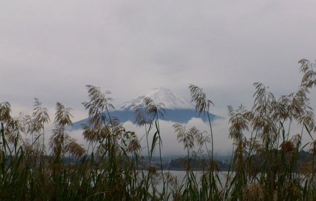 Chamber Music by Mount Fuji