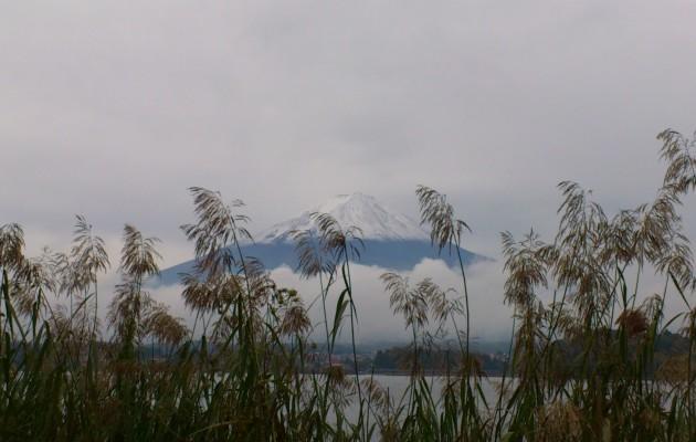 Chamber Music by Mount Fuji